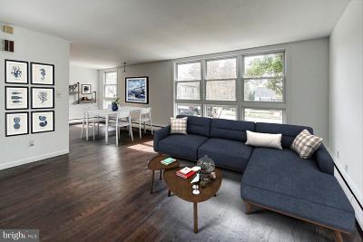 Annapolis Single Family Home For Sale: 1295 Virginia Street