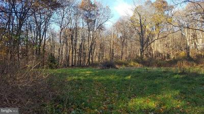 Frostburg Residential Lots & Land For Sale: Upper Consol Road