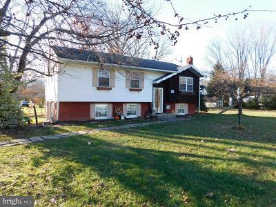 Cresaptown Single Family Home For Sale: 14808 Broadway Street