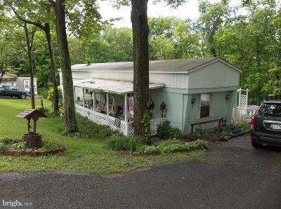 Frostburg Single Family Home For Sale: 15909 Woodsview Drive
