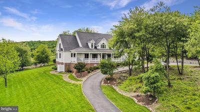 Cresaptown Single Family Home For Sale: 14712 Barton Boulevard SW