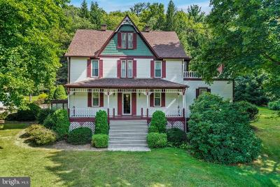 Frostburg Single Family Home For Sale: 14610 SW New Georges Creek Road