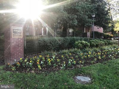 Baltimore City Rental For Rent: 355 Homeland Southway #3C