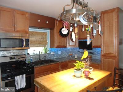 Baltimore Single Family Home For Sale: 4315 Frankford Avenue
