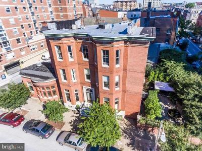 Mount Vernon Rental For Rent: 106 Chase Street #2
