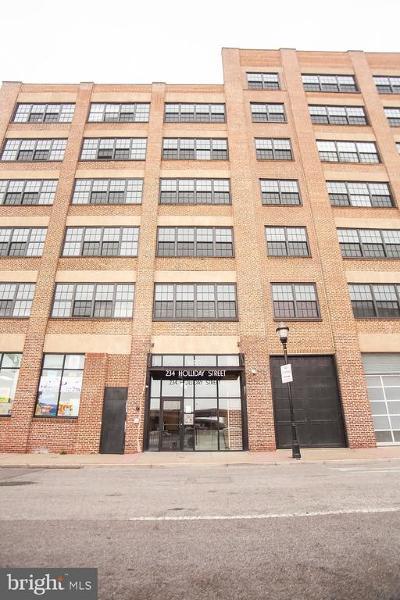 Baltimore Condo For Sale: 234 Holliday Street #204