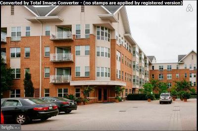 Baltimore City Rental For Rent: 23 Pierside Drive #424