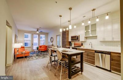 Baltimore Rental For Rent: 611 Charles Street S #457