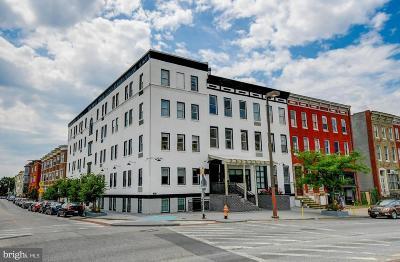 Mount Vernon Rental For Rent: 231 E North Avenue #10
