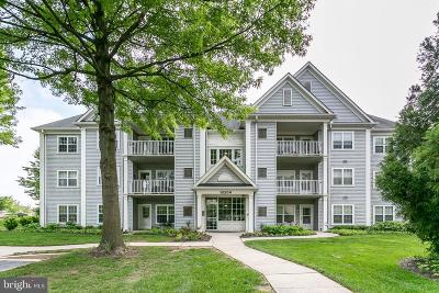 Lutherville Timonium Condo For Sale: 12200 Burncourt Road #301