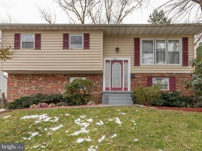 Randallstown Single Family Home For Sale: 9817 Southall Road
