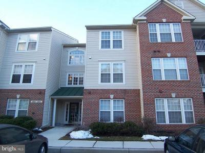 Owings Mills Condo For Sale: 2042 Hunting Ridge Drive