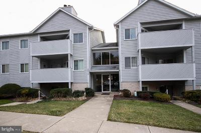 Parkville Condo For Sale: 2213 Lowells Glen Road #D