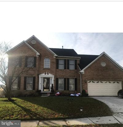 Owings Mills Single Family Home For Sale: 9325 Lyonswood Drive