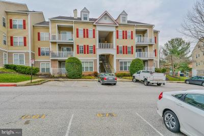 Condo For Sale: 4 Tyler Falls Court #H