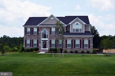 Single Family Home For Sale: 11924 Bluestone