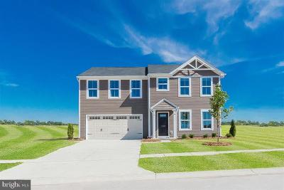 Single Family Home For Sale: 10008 Clairview Lane