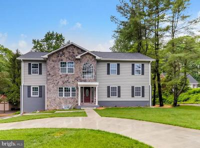 Baltimore Single Family Home For Sale: 907 E Seminary Avenue