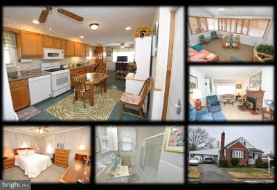 Baltimore Single Family Home For Sale: 4232 Soth Avenue
