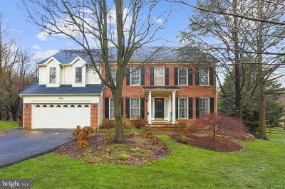 Owings Mills Single Family Home For Sale: 3722 Birchmere Court