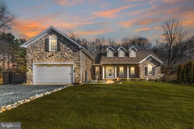 Baltimore Single Family Home For Sale: 1017 Susquehanna Avenue