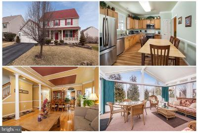 Baltimore County Single Family Home For Sale: 8213 Selwin Court