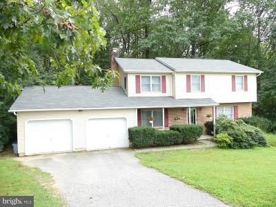 Reisterstown Single Family Home For Sale: 607 Cockeys Mill Road