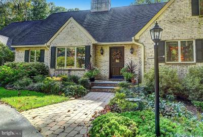 Baltimore County Single Family Home For Sale: 3 Stonewood Court