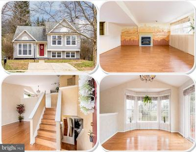 Reisterstown Single Family Home For Sale: 101 Marshall Wood Road