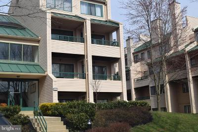 Owings Mills Condo For Sale: 8015 Valley Manor Road #2B