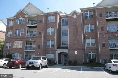 Perry Hall Condo For Sale: 9503 Kingscroft Terrace #B