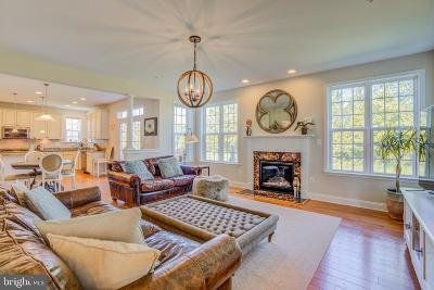Baltimore Single Family Home For Sale: 2344 Sweet Meadow Road