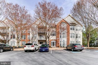 Owings Mills Condo Active Under Contract: 5213 Wagon Shed Circle