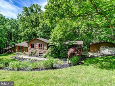Baltimore County Single Family Home For Sale: 3829 Dance Mill Road