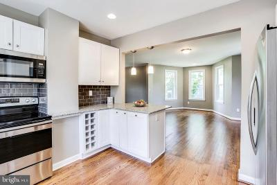 Baltimore Single Family Home For Sale: 246 2nd Avenue