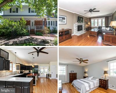 Cockeysville Single Family Home For Sale: 1013 Saxon Hill Drive