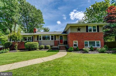 Baltimore County Single Family Home For Sale: 13 Dalebrook Drive
