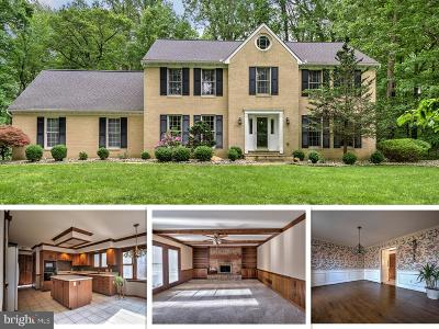 Baltimore County Single Family Home For Sale: 14223 Sawmill Court