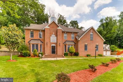 Owings Mills Single Family Home For Sale: 101 St Thomas Lane