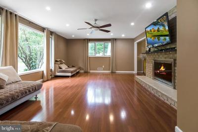 Owings Mills Single Family Home For Sale: 10905 Park Heights Avenue