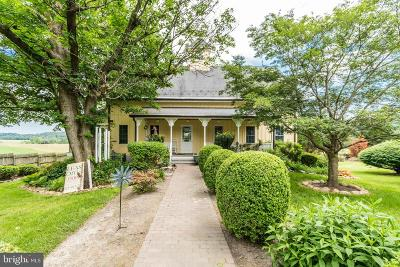 Glen Arm Single Family Home For Sale: 12231 Long Green Pike