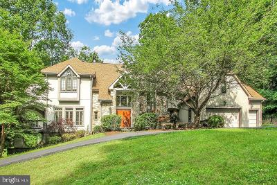 Owings Mills Single Family Home For Sale: 10 Valleys Crest Court