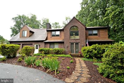 Reisterstown Single Family Home For Sale: 613 Sunspot Road