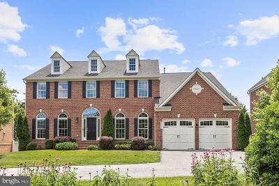 Baltimore Single Family Home For Sale: 307 Lyon Court