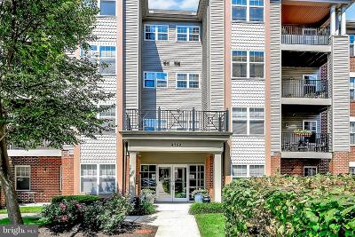 Owings Mills Single Family Home For Sale: 4750 Coyle Road #401