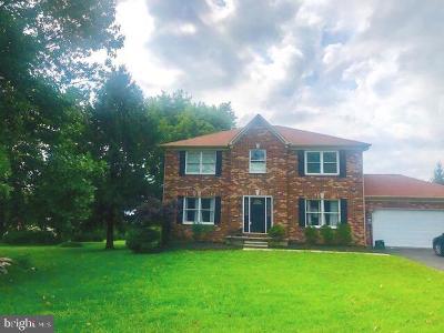 Baltimore County Single Family Home For Sale: 9727 Slalom Run Drive