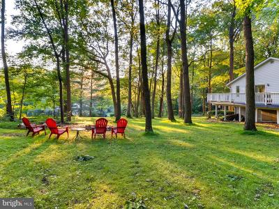 Baltimore County Single Family Home For Sale: 16203 Dark Hollow Road
