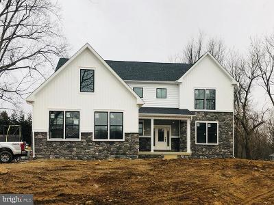 Baltimore County Single Family Home For Sale: 10909 Powers Avenue