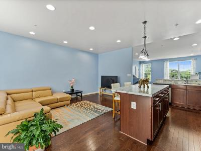 Baltimore County Townhouse For Sale: 2711 Theresa Lane