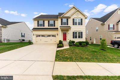 Baltimore County Single Family Home For Sale: 7827 Shadow Knoll Court